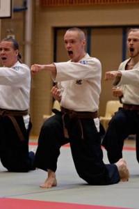 Upea otos Turun miesten dantai hokeista joukkue SM 2006, jossa tämä porukka oli 4.Kuva Tuomas Haapanen